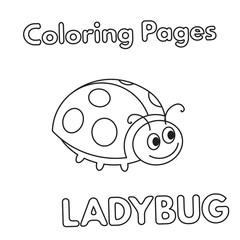 Cartoon Ladybug Coloring Book