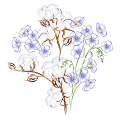 Cotton and flax. Hand drawn vector brush illustration of flax flowers and cotton branch with seed bolls.