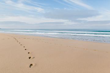 Fußabdrücke im Sand am Meer