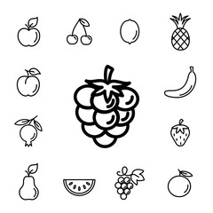 raspberry berry with leaf line icons set black on white