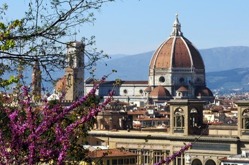 Beautiful view of Basilica di Santa Maria del Fiore Cathedral in Florence in Tuscany, Italy with flowering tree