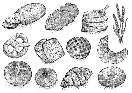 Bakery products illustration, drawing, engraving, ink, line art, vector