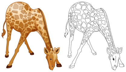 Doodles drafting animal for wild giraffe