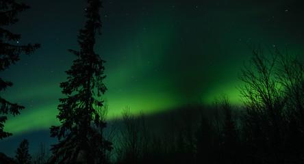 Aurora borealis in Russian Lapland, Kola Peninsula