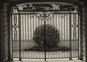 black and white image of garden behind closed gates