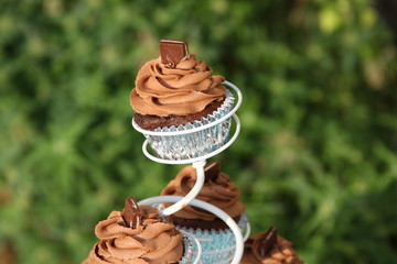 Outdoor Wedding Cupcake On a Stand