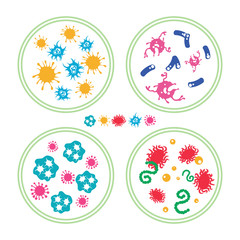 Colorful phatogen virus and immune bacteries in Petri dish, vector illustration