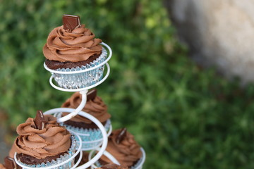 Mint Chocolate Cupcake Outside on a Stand