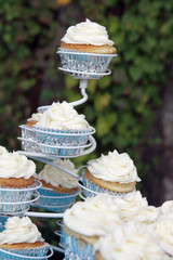 Wedding Vanilla Bean Cupcake on a Stand