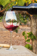 Red wine poured into glass at vineyard on harvest