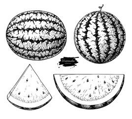 Watermelon and slice vector drawing set. Isolated hand drawn berry on white background. Summer fruit engraved style