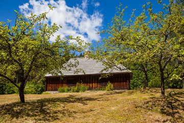 Wooden rural house and green garden, Baltic traditions, Latvia
