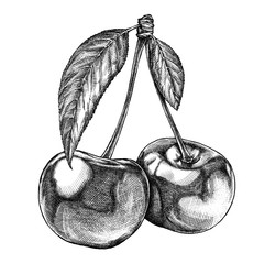 Engrave isolated cherry hand drawn graphic illustration
