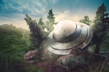 In de dag UFO Crashed UFO in a forest at dusk