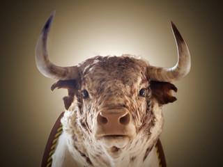 Wall Murals Bullfighting Cabeza de toro