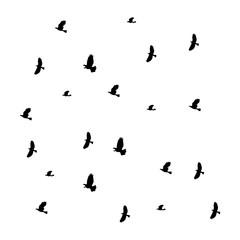 Birds vector icon.