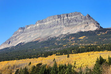 Wall Mural - Mountain Plateau in Glacier National Park with Fall colors