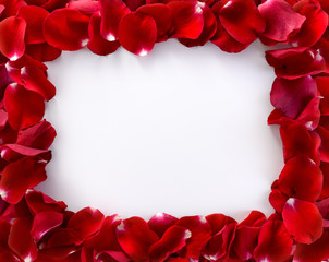 Frame from rose's petals