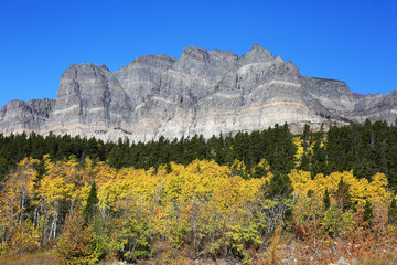 Wall Mural - Mountainside and Fall Colors