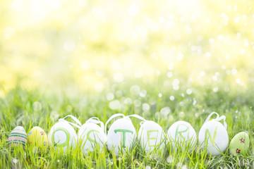 Frühling Osterkarte Wiese