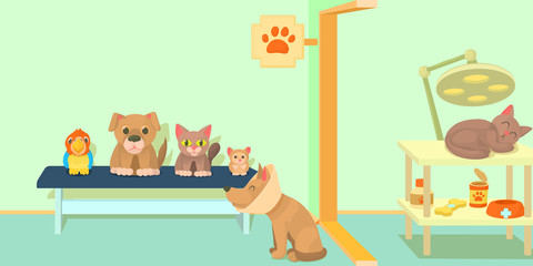 Veterinary clinic horizontal banner, cartoon style