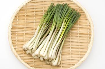 島らっきょう(沖縄 島野菜)