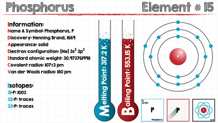 Large and detailed infographic of the element of Phosphorus