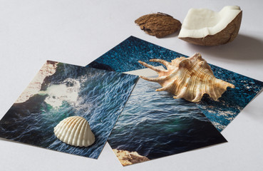 Shells and pictures with the image of the sea on white surface