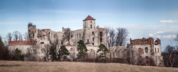 Castle Tenczyn. Ruins old medieval castle in Rudno, Poland. Characteristic type of construction the castle in the style of eagle nests.