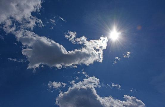 空想の世界・太陽とモンスターとトラ