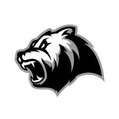 Furious bear head sport vector logo concept isolated on white background. Modern predator professional team badge design. Premium quality wild animal t-shirt tee print illustration.
