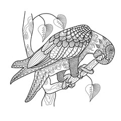 Parrot with a beautiful pattern. Freehand sketch with doodle element. Print on T-shirts, banners, posters, covers. Coloring page book for adults and children.