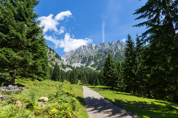 Wall Mural - Austrian Alps. Path through summer mountain landscape, Kaiser mountains, Austria, Tyrol