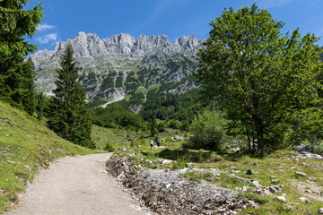 Wall Mural - Summer mountains landscape. Hiking in the Alps, Kaiser Mountains,  Austria, Tyrol