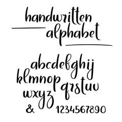 Vector handwritten brush alphabet. Hand lettering brushpen letters and numbers.