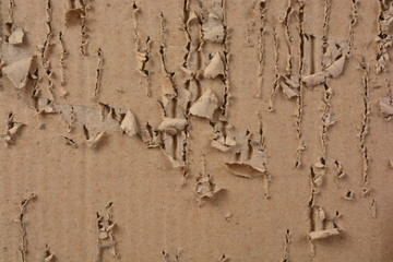 ripped and scratch corrugated paper sheet