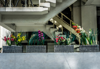 Various kind of colourful flowers in vase for decoration near the stairs photo taken in Jakarta Indonesia