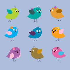 Collection of cute multi-colored birds on a blue background
