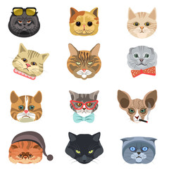 Cartoon cats and hipster kittens face muzzles vector icons