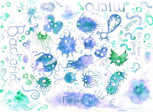 Watercolor set of illustrations of different bacteria and fungus in colorful silhouette