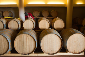 wine cellar for storing aged wine