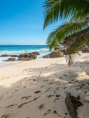 Spectacular Carana Beach on the Northern end of Mahe Island, Seychelles. Beautiful sunny beach. View of nice tropical beach with palms around. Holiday and Vacation concept.