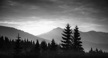 A beautiful, abstract monochrome mountain landscape with trees. Decorative, artistic look in black and white style.
