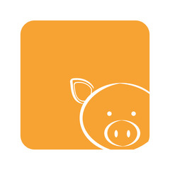 orange square picture of pig animal, vector illustration