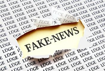 Fake News - Konzept