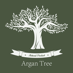 Argania tree or argan fruit plant