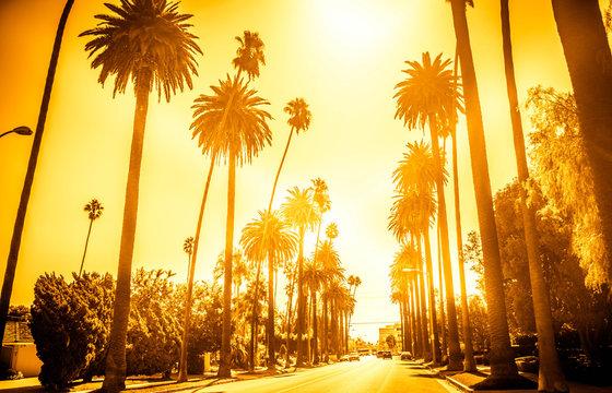 Street in Beverly Hills, California