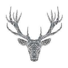 Testa di cervo, illustrazione vettoriale