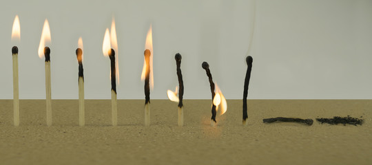 Life Cycle Concept Using Matchsticks