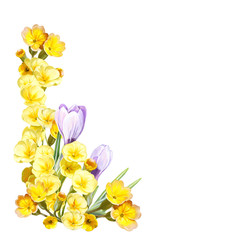 cartoon scene with beautiful and colorful flowers on white background